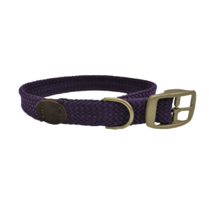 collar-puple