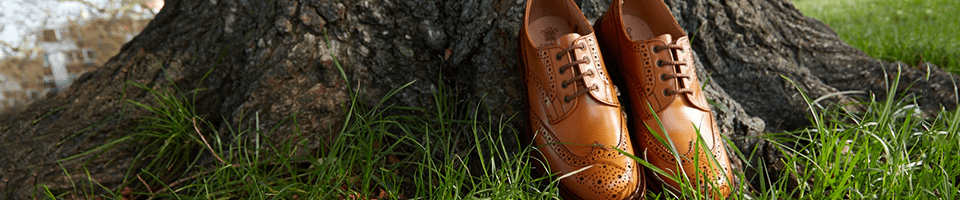 Gentlemans Casual Shoes for Special Occasions.