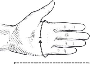 Hestra Hand Measurement guide