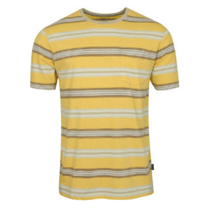 Patagonia Squeaky Clean Pocket Tee Tarkine Stripe Surfboard