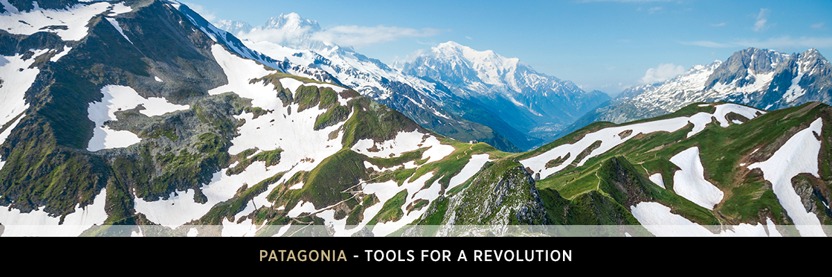 Patagonia - Tools for a revolution - Snow Topped Mountain Scene