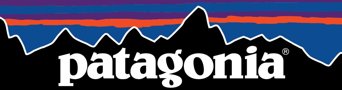 Patagonia Large Logo