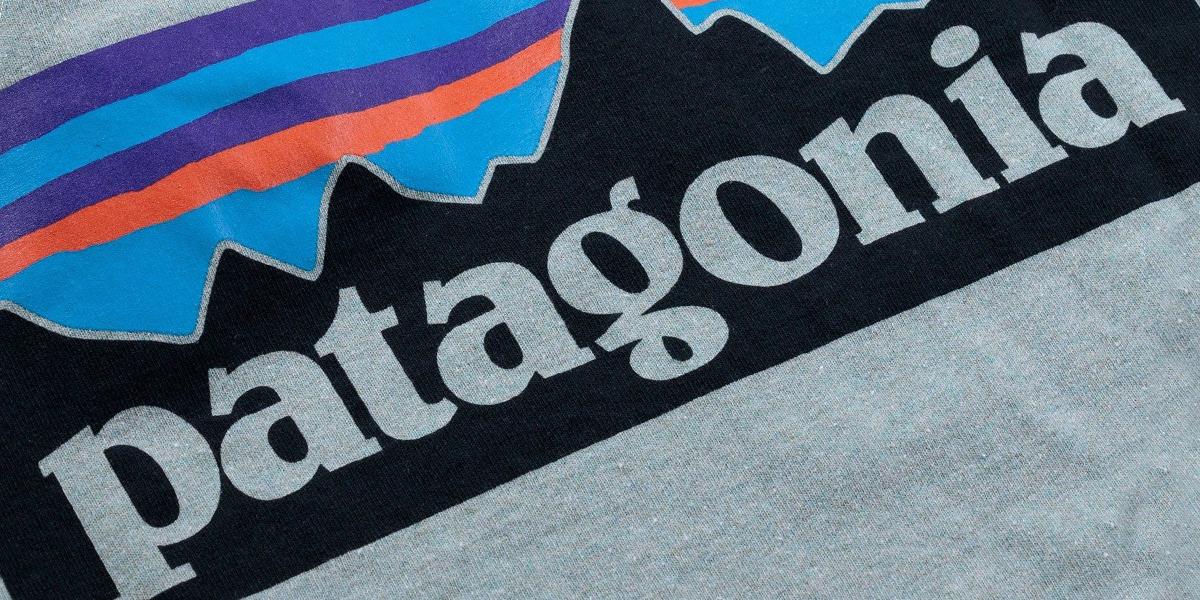 Patagonia Logo on t-Shirt