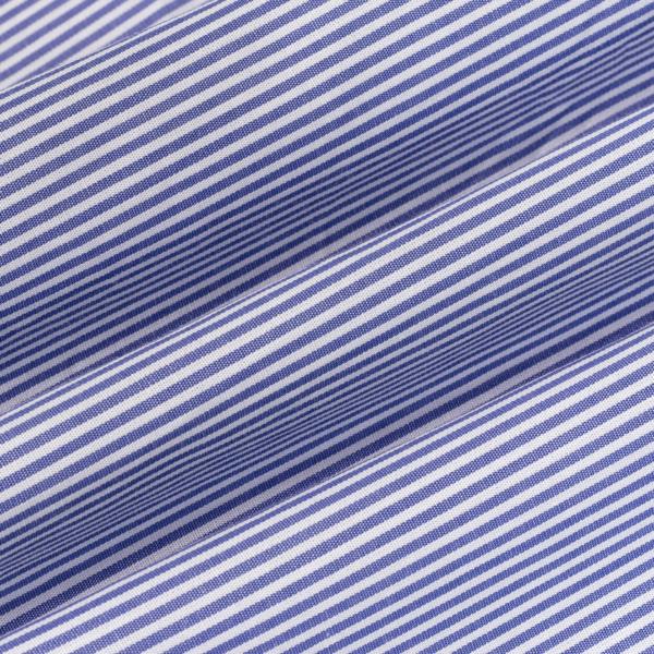 Polo Ralph Lauren Classic Fit Striped Shirt Blue / White
