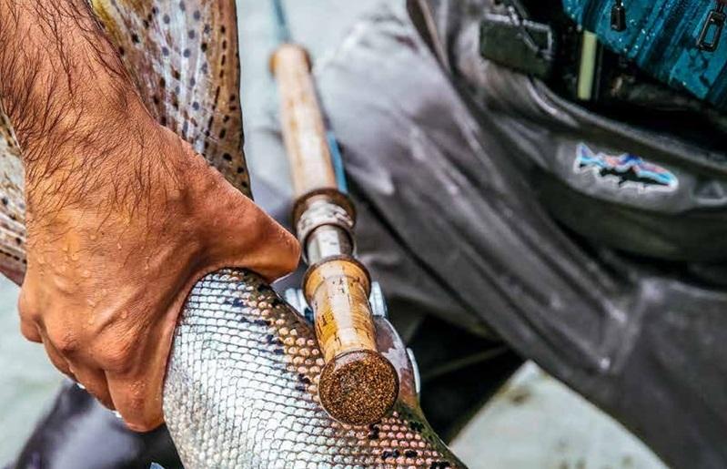 Patagonia Fishing Weatherproof Clothing