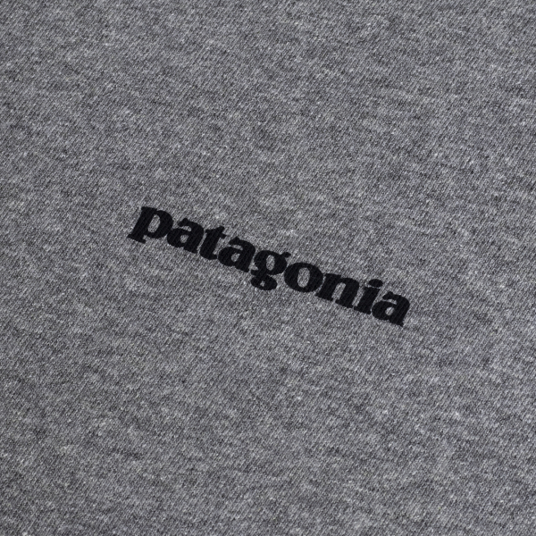 Patagonia Framed Fitz Roy Trout Responsibili-Tee Gravel Heather