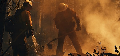 Fire Fighters tackling forest blaze in United States