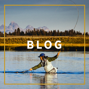 Patagonia Fishing Blog Feature