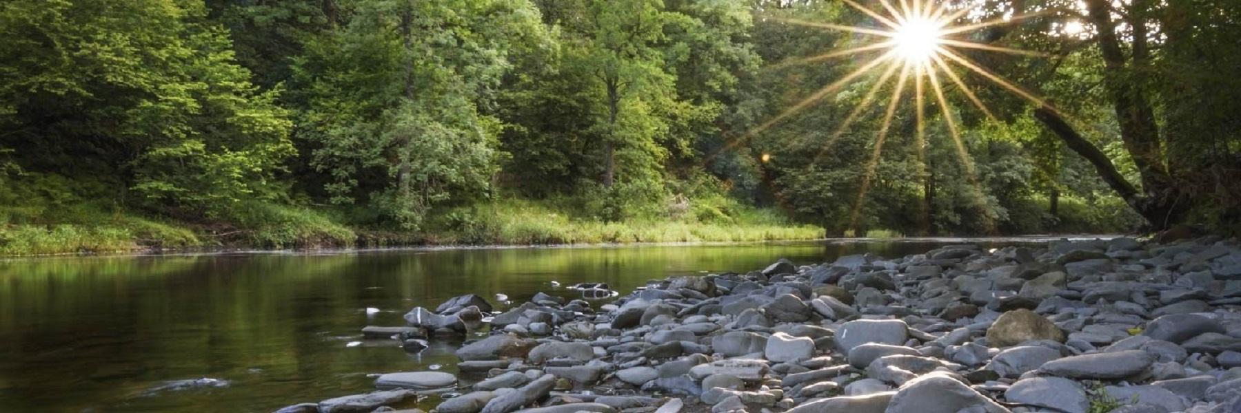 Lune Rivers Trust