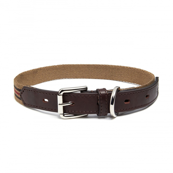 James Purdey Webbing Dog Collar M